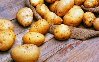 Potato Quality- Calcium and how to use it better